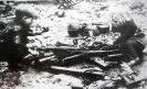 Bimbi in Guerra